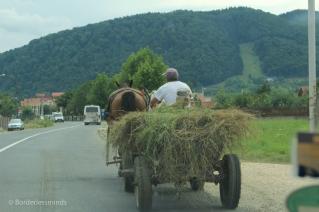 Animal power in Transylvania; Romania