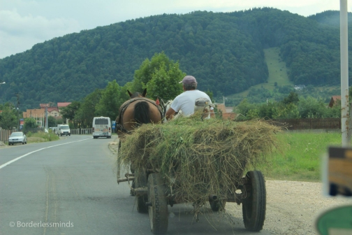 Animal power in Transylvania; Romania